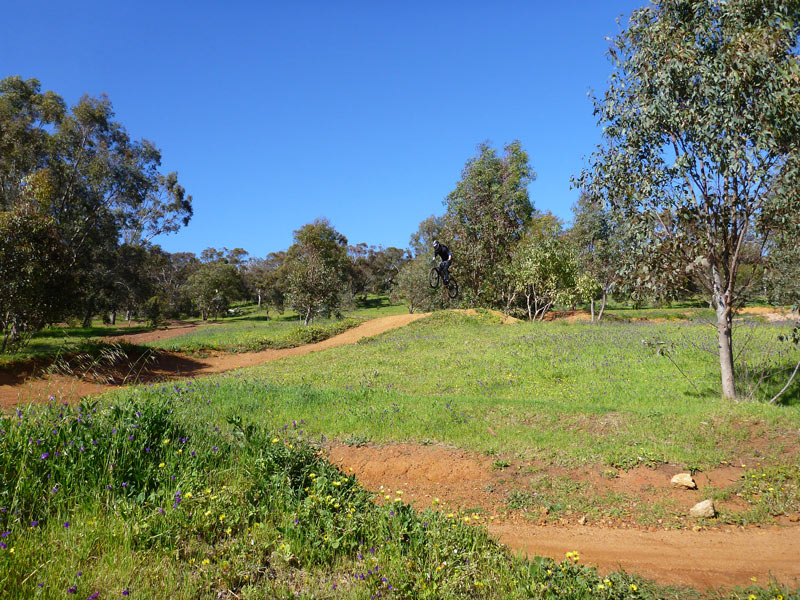 MTB-Goat-Farm-Greenmount-National-Park