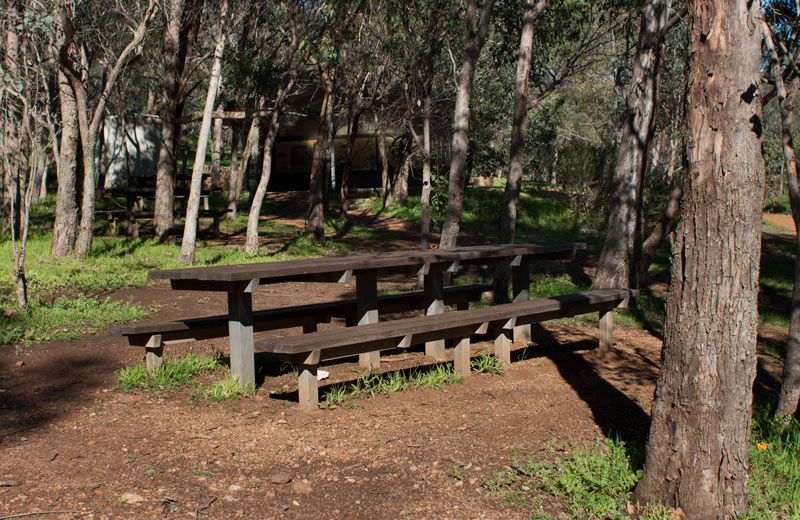 Picnic-tables-goat-farm