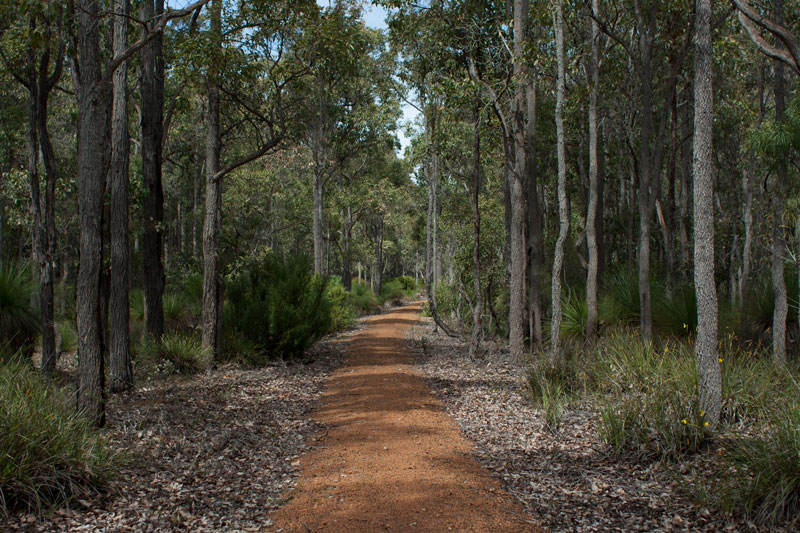 Jarrahwood-sidings-trail