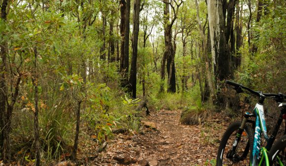 Mountain-bike-western-australia