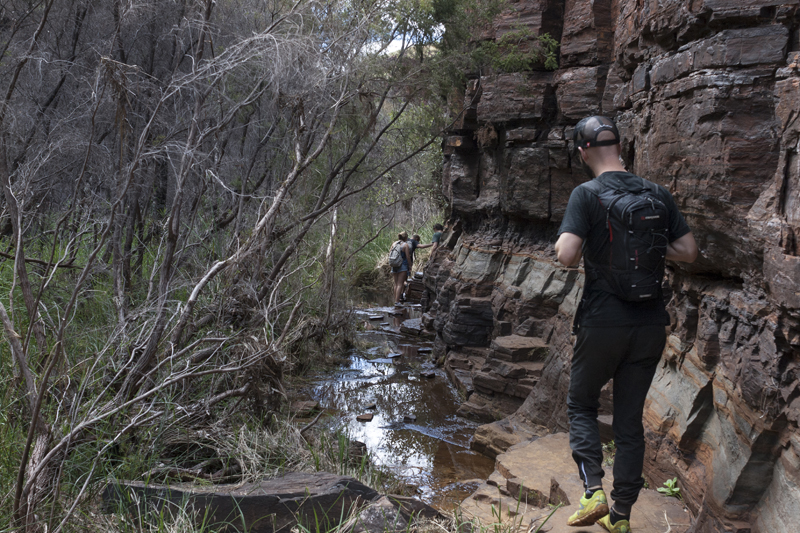 Dales Gorge 9
