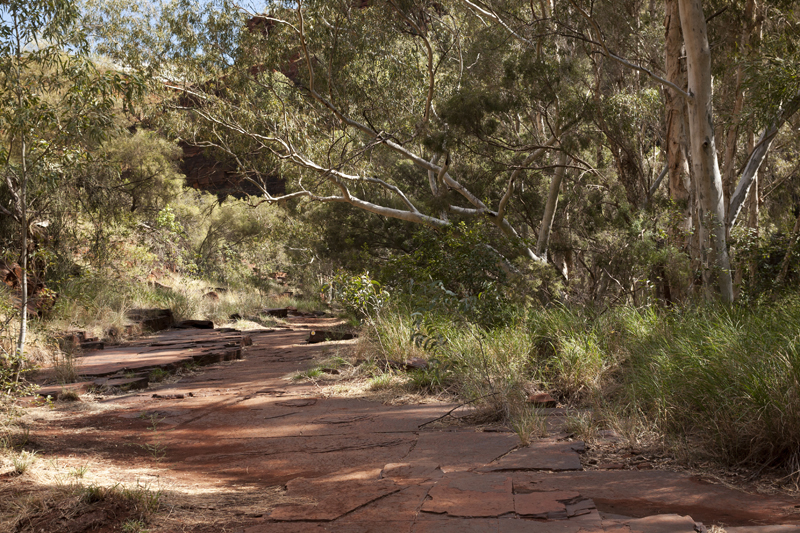 Dales gorge 11