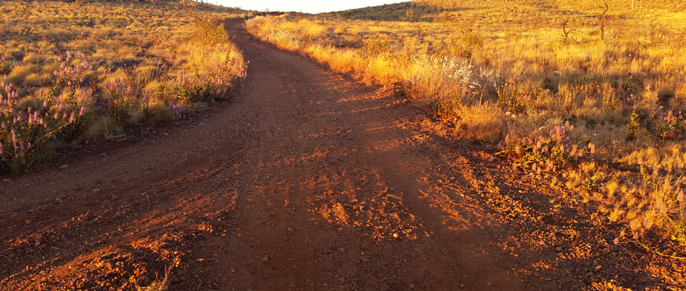 Karratha-MTB-trail-WA-tracks